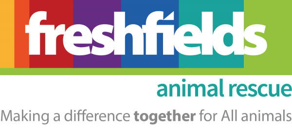 freshfields_logo_colour